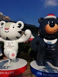 2018平昌冬季オリンピック - 都忘れと忘れな草