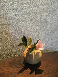 椿と弥生の壺 - 花、書、音楽、旅、人、、、日常で出会う美しごとを