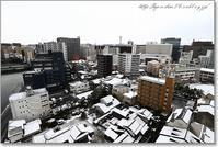 雪が・・・ - Have a nice day!