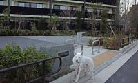 Vol.1297 上の宮一丁目公園 - 小太郎の白っぽい世界