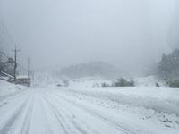 雪の大万木山リベンジ① - 清治の花便り