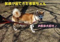 大きなどんでん返し・・・(^^;) - もももの部屋(家族を待っている保護犬たちと我家の愛犬のブログです)