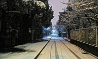 積雪 - A  B  C