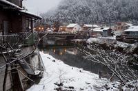 凍えた郡上解禁日・・ - 鈴木寿のブログ  フライフィッシングな毎日