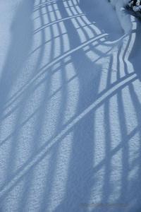 大雪の後 - デジタルで見ていた風景