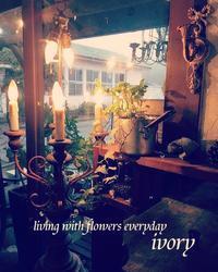 『春まだ遠い〜♪』 -  Flower and cafe 花空間 ivory (アイボリー)