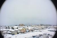 雪の鶴岡 - 「 ボ ♪ ボ ♪ 僕らは釣れない中年団 ♪ 」