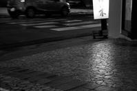 灯り - 小さな感動 Photo blog
