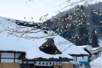 【大内宿雪まつり】part 2 - うろ子とカメラ。