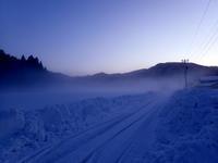 寒波が過ぎ去って・・・ - 自然がいっぱい3