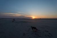 今日の夕日とまたあした。 - 東に向かえば海がある