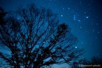 冷たい夜 - kawanori-photo