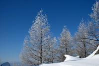 高峰山スノーシュートレッキング - うひひなまいにち