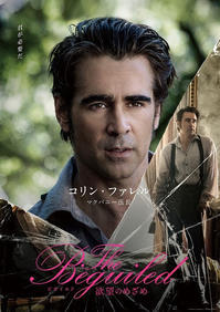 The Beguiled(2017) - いよいよ来週公開‼︎ - *+*feather factor*+*
