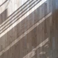 帯状の光、ナラアクセント壁 - kukka kukka