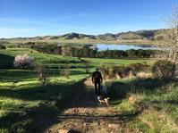 今のうちに出歩いておく - ちょっと田舎暮しCalifornia