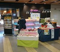 ecute東京催事イベントのお知らせ - 【飴屋通信】 京都の飴工房「岩井製菓」のブログ