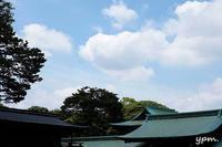 明治神宮の写真 - photographer taron_diary