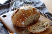 キシノウエン産小麦6割でカンパーニュ - キシノウエンの 今日のてしごと