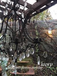『見覚えのある………。』 -  Flower and cafe 花空間 ivory (アイボリー)