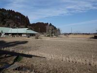 枝の中に黒い目が、、、 - 千葉県いすみ環境と文化のさとセンター