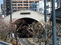 梅香トンネル 南側 - みとぶら
