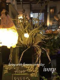 暖かな日曜日 -  Flower and cafe 花空間 ivory (アイボリー)