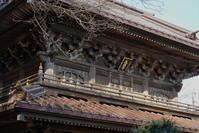 2.11 英勝寺 - 週末はソニーα6500でぶらり鎌倉・湘南散歩!