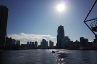 Tokyo Snap 06 - 花は桜木、