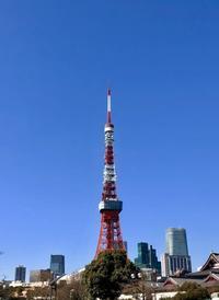 青空と東京タワーと今週の出演予定。 - マコト日記