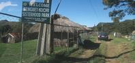 ベンゲット州ATOK町Paoay地区の「桜パーク」Benguet-Kochi Sisterhood(Sakura, cherry blossom)Park - バギオの北ルソン日本人会 JANL