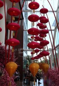 Chinese New Year - 日々是好写