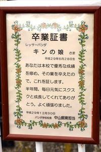 真冬の946三昧・その1 - レッサーパンダ☆もふてく放浪記