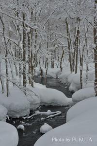 厳冬の裏磐梯にて3 - Photo Gallery 福田