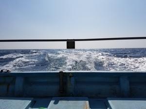 タイラバ - 志摩沖 ほっぺ毛丸