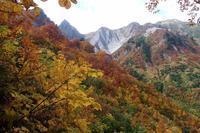 紅葉に着飾った雨飾山! 山頂から見た北アルプスの峰々! - mMm (my Mountain memories)
