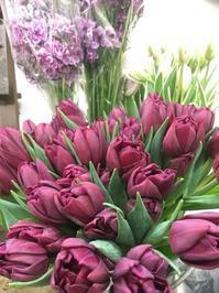 【お花の会】フラワーレッスン開催期間です。 - ルーシュの花仕事