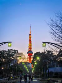 2018.2.20東京タワーと五日月(芝公園) - ダイヤモンド△△追っかけ記録