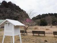 雨水 - 千葉県いすみ環境と文化のさとセンター