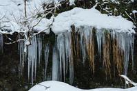 天然氷 - デジタルで見ていた風景