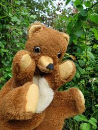 凄~く愛されたパペット熊 -  Der Liebling ~蚤の市フリークの雑貨手帖2冊目~