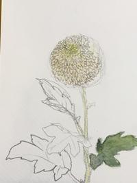 日本画教室。講師募集。 - 『一日一畫』 日本画家池上紘子