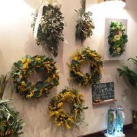3月8日ミモザの日 - 花だより 海浜幕張駅 花屋 テーブルコサージュ・ラボ~フラワーショップ~