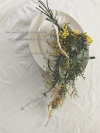 春をうたうミモザで  workshop @mamma dougnutsさん - つきくさ帖   草花とおして、毎日とくべつ