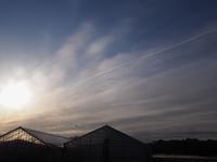 朝の風景 - 空を見上げて