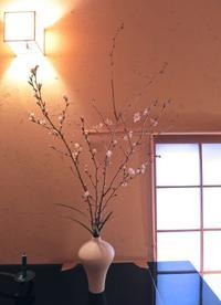 早春ー雨水の頃 - g's style day by day ー京都嵐山から、季節を楽しむ日々をお届けしますー