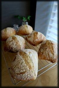 チャバタ、クランベリーベーグル - KuriSalo 天然酵母ちいさなパン教室と日々の暮らしの事
