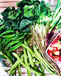 春はもうそこまでやってきている、、、はず! - La Tavola Siciliana  ~美味しい&幸せなシチリアの食卓~