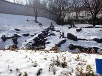 残雪の多摩動物公園~雪サーバルとアフリカゾウ・砥夢 - 続々・動物園ありマス。