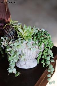 3月の多肉植物の会のお知らせ - さにべるスタッフblog     -Sunny Day's Garden-